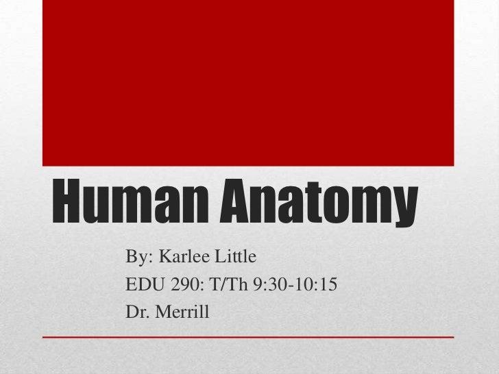 Human Anatomy<br />By: Karlee Little<br />EDU 290: T/Th 9:30-10:15<br />Dr. Merrill<br />