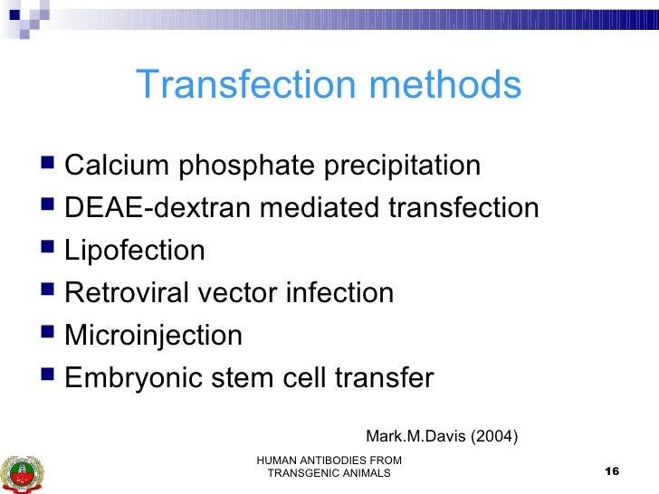 Human Antibodies From Transgenic Animals