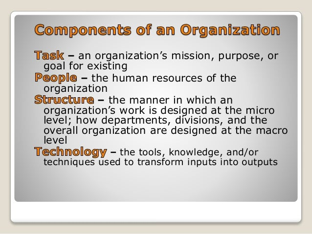 importance of human behavior in organization