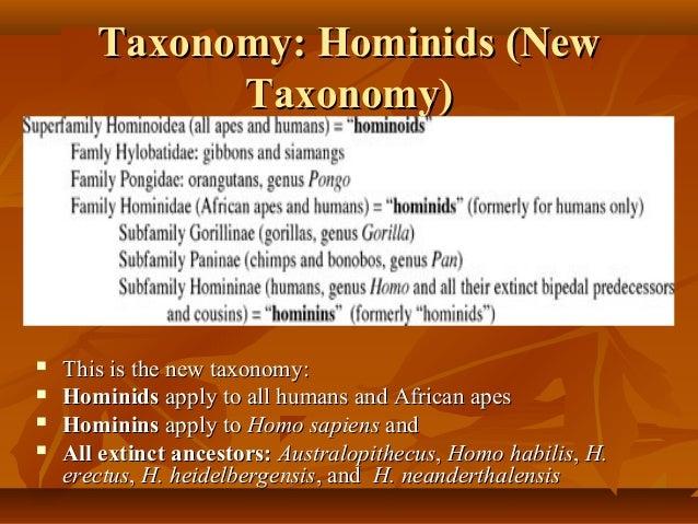 Chimpanzee Taxonomy Human biologica...