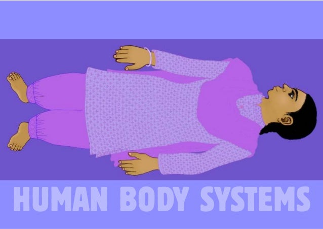 1  HUMAN BODY SYSTEMS