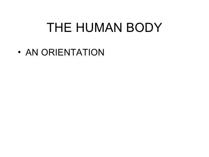 THE HUMAN BODY <ul><li>AN ORIENTATION </li></ul>