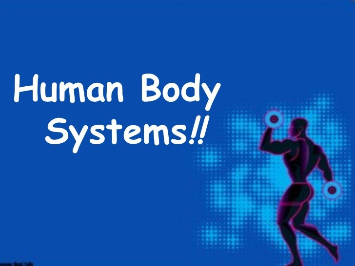 Human Body Systems!!