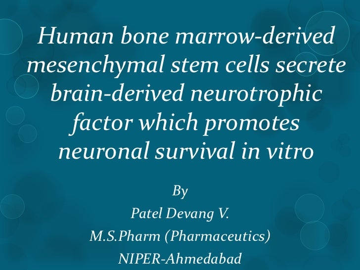 Human bone marrow-derivedmesenchymal stem cells secrete  brain-derived neurotrophic    factor which promotes   neuronal su...