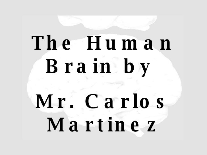 The Human Brain by  Mr. Carlos Martinez