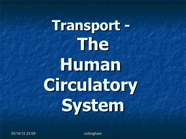 Transport -                     The                   Human                 Circulatory                   System03/14/12 2...