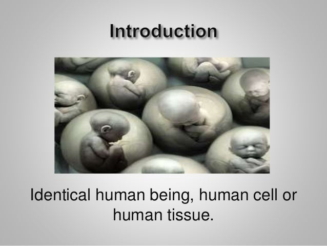 an introduction to human cloning Human cloning religious and ethical aspects  it might produce greater understanding of the causes of miscarriages this might lead to a treatment to prevent spontaneous abortions.
