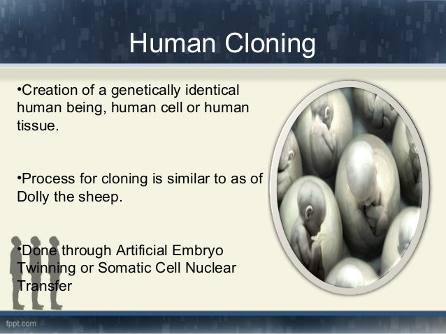 cloning on humans Human cloning is the creation of a genetically identical copy (or clone) of a human the term is generally used to refer to artificial human cloning, which is the reproduction of human cells and tissue it does not refer to the natural conception and delivery of identical twins the possibility of human cloning has raised.