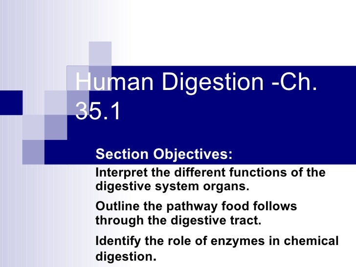 Human Digestion -Ch. 35.1 Section Objectives: Interpret the different functions of the digestive system organs. Outline th...