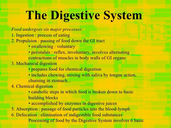 an overview of the different stages of digestion A comprehensive review of food gastric digestion, focusing on  understanding  of the food digestion process in the stomach as related to the food composition,.