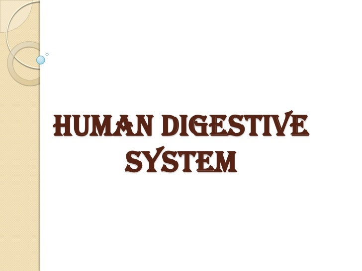 The digestive system powerpoint presentation