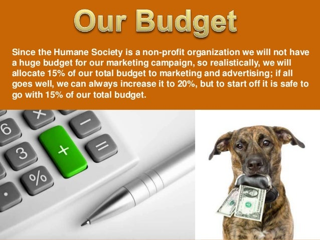 Adopt Don T Shop Marketing Campaign For The Humane Society