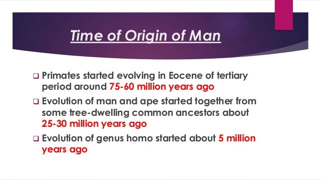 Image result for evolution of man from a common ancestor
