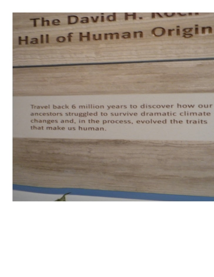The Hall of Human Origins Smithsonian National Museum of        Natural Science          Spring 2011