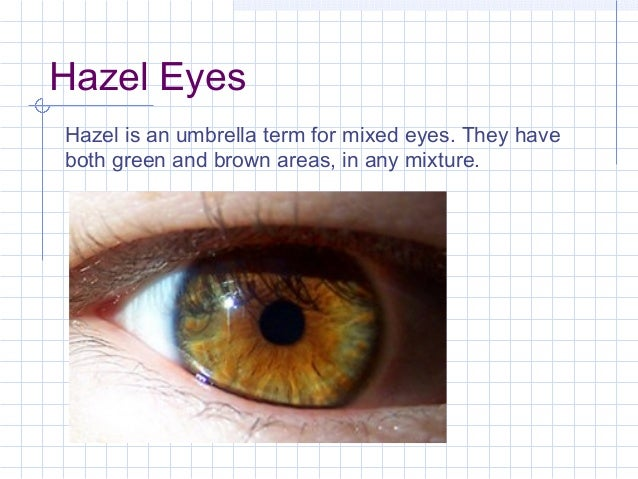 What is the color hazel look like
