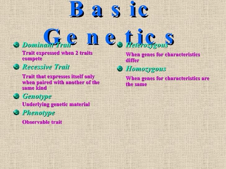 Basic Genetics <ul><li>Dominant Trait </li></ul><ul><li>Trait expressed when 2 traits compete </li></ul><ul><li>Recessive ...