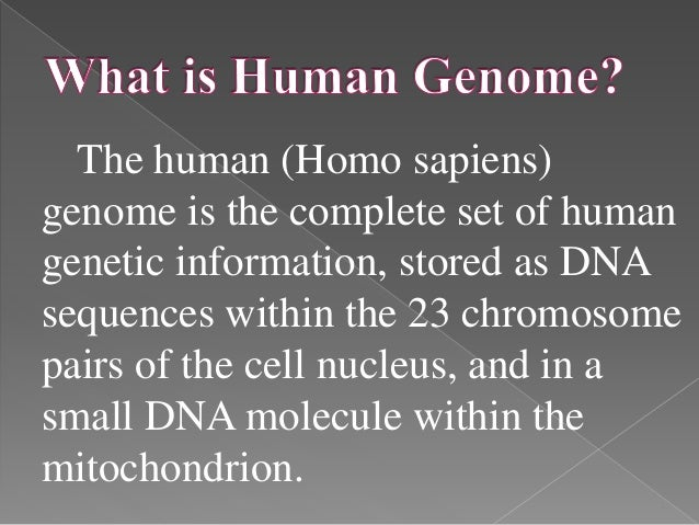 the biochemical description of the dna and its importance in cloning Define cloning cloning synonyms, cloning pronunciation, cloning translation, english dictionary definition of cloning n 1 a group of cells or organisms that are.