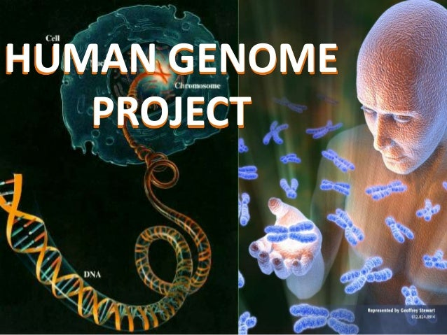 Human genome project.