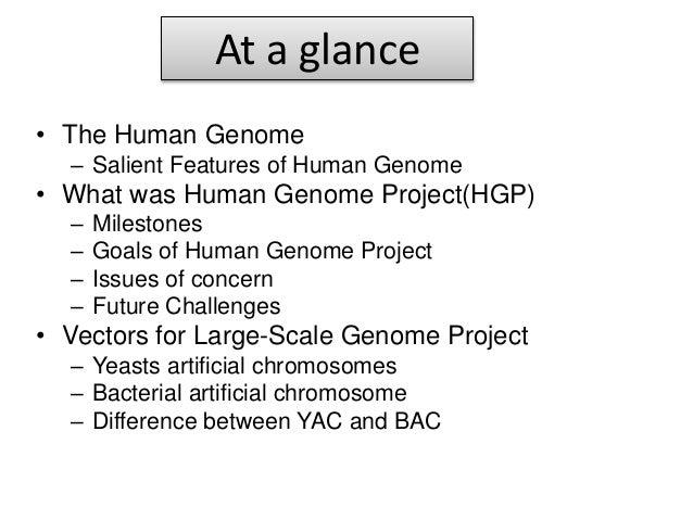 Human Genome Resources at NCBI