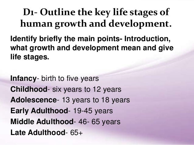 The various stages of development in humans