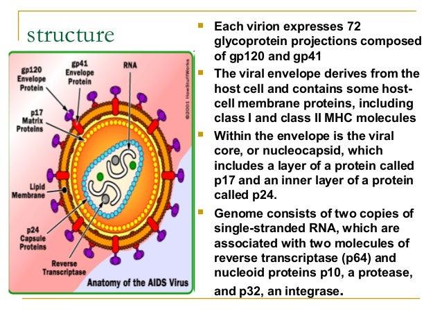 Human Immunodeficiency virus , (AIDS)