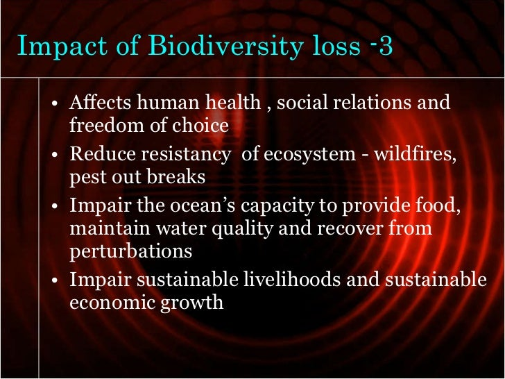 human impact on biodiversity and ecosystem Ecosystem our students need to understand the importance of the human impact  on biodiversity, both on the local and global level this unit was inspired by the.