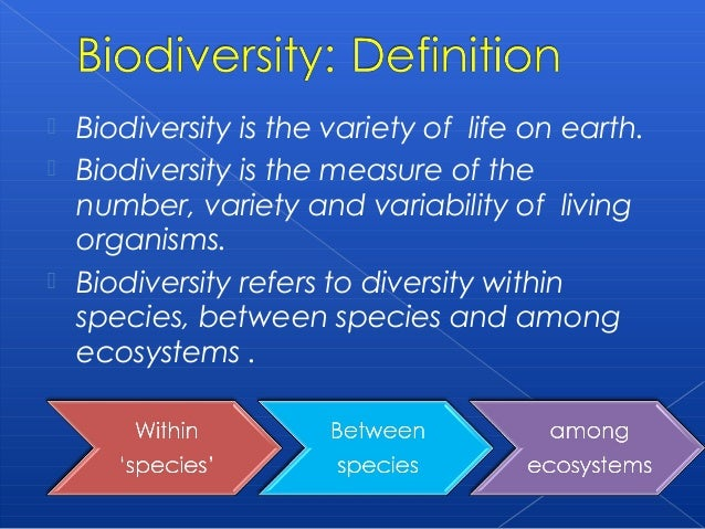 extinctions essay The leading causes of animal extinction biology essay introduction: every organism and species has the right to live in a harmonious and safe world, hence nobody has.