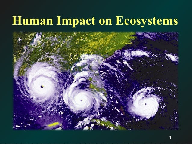 how humans impact the ecosystem essay Overall, humans impact the global environment in multitudinous ways whether positive or negative while creating issues such as overpopulation, pollution, biomagnification, and deforestation they also intrude into many other factors such as environmental, social, political, and economic.