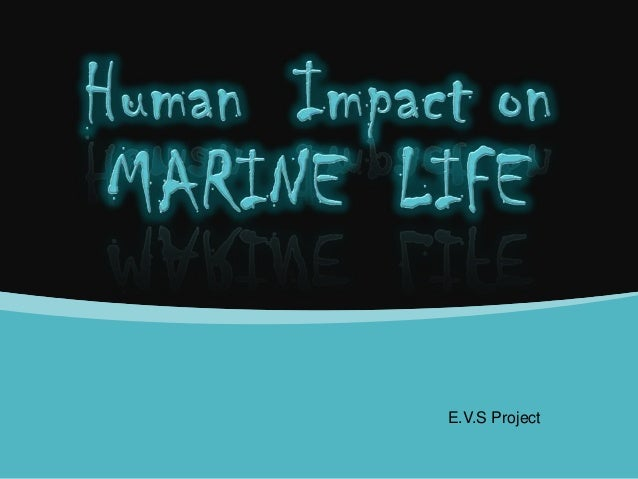 E.V.S Project
