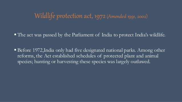 human impact on wildlife Some is caused by a combination of human and natural factors like wildfires and subsequent overgrazing,  deforestation can have a negative impact on the environment.