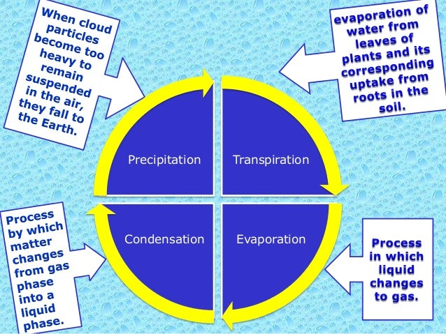 water evaporation essay You don't have to leave your house to see evaporation in action when water reaches its boiling point what is evaporation us history regents essay topics.