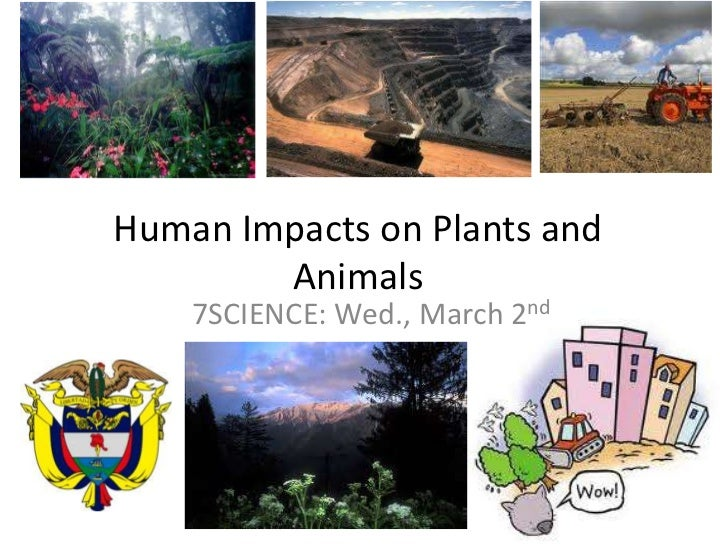 Human Impacts on Plants and Animals<br />7SCIENCE: Wed., March 2nd<br />