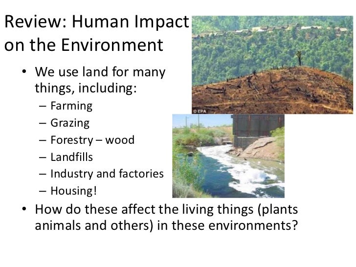 human effects on the environment