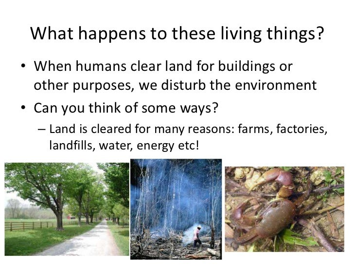 human impact on wildlife Change resulting from human activities was aggravating the pressure already  exerted by  and wildlife, thereby driving us directly towards a sixth extinction.