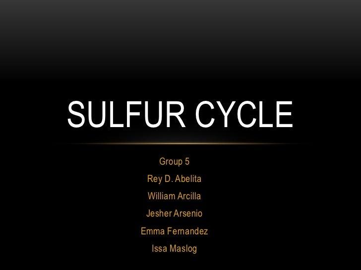 sulfur cycle group 5 rey d  abelita william arcilla jesher arsenio emma  fernandez