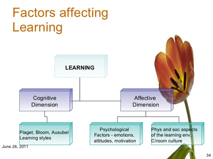 dimensions affecting learning acquisition of cte The comprehensive t-tess rubric includes specific dimensions,  their  practices to support language acquisition so that language is  affect students'  performance in other areas  o career and technical education.