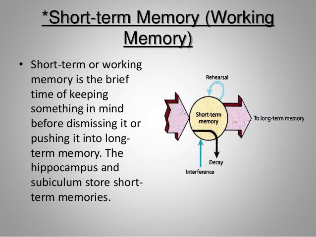 a brief examination of human memory You will be able to take a memory test after learning about the memory techniques  it can be used to code lists of experiments to be recalled in a science exam.