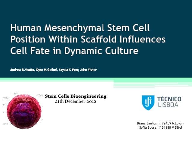 Stem Cells Bioengineering    21th December 2012                            Diana Santos nº 72459 MEBiom                   ...