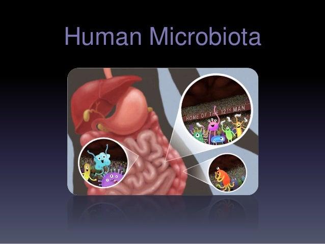 Human Microbiota