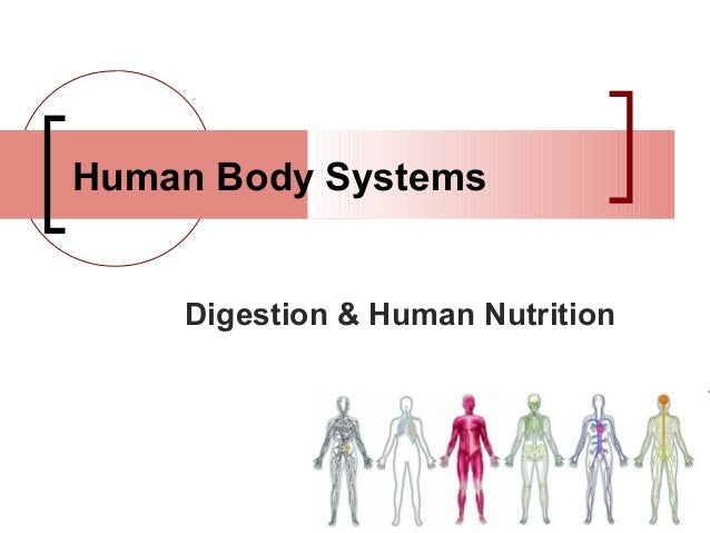 Human Body Systems    Digestion & Human Nutrition