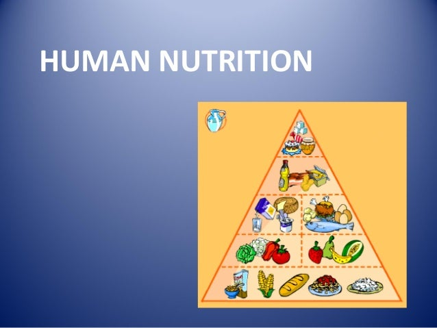 Department of Human Nutrition