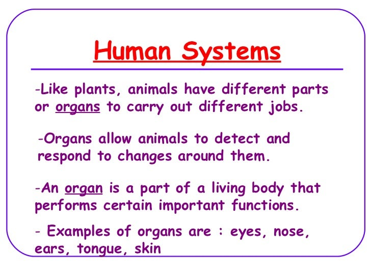 Human Systems -Like plants, animals have different parts or organs to carry out different jobs.  -Organs allow animals to ...