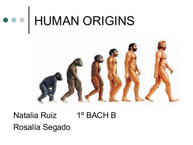 HUMAN ORIGINS Natalia Ruiz 1º BACH B Rosalía Segado