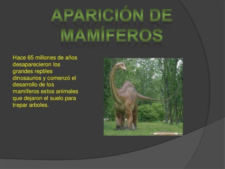 Aparición de mamíferos<br />Hace 65 millones de años desaparecieron los grandes reptiles dinosaurios y comenzó el desarrol...