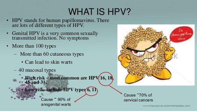 Image result for HPV