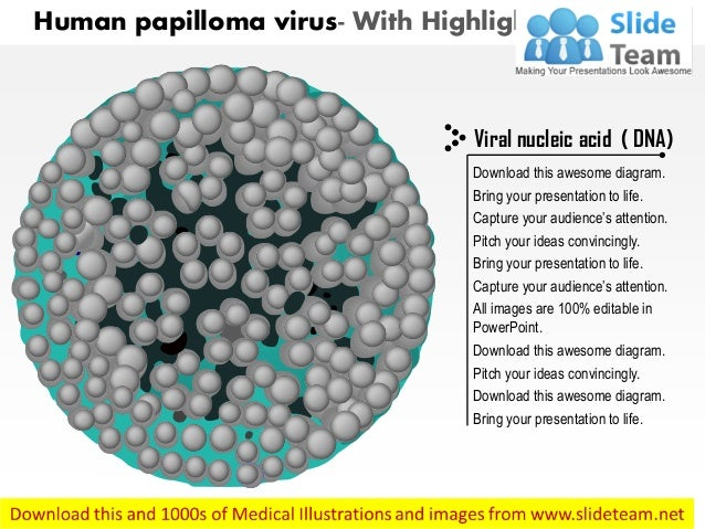 hpv virus diagram | Diarra