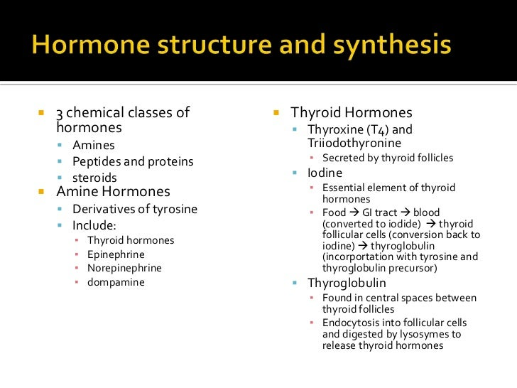 synthesis of steroid hormones occurs where