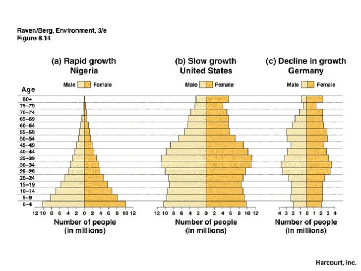 the birth rate falls to meet death and population growth