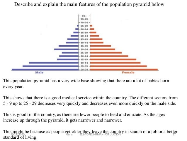 Worksheets Population Pyramid Worksheet ib ess human population 56 57
