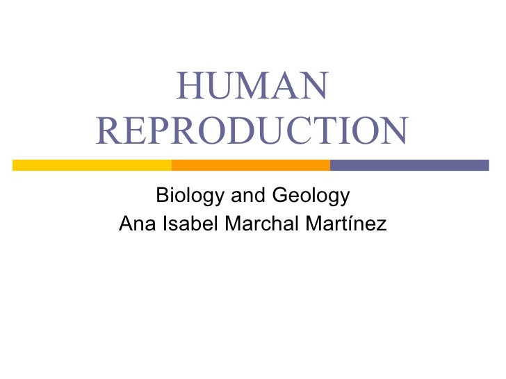 HUMAN REPRODUCTION Biology and Geology Ana Isabel Marchal Martínez